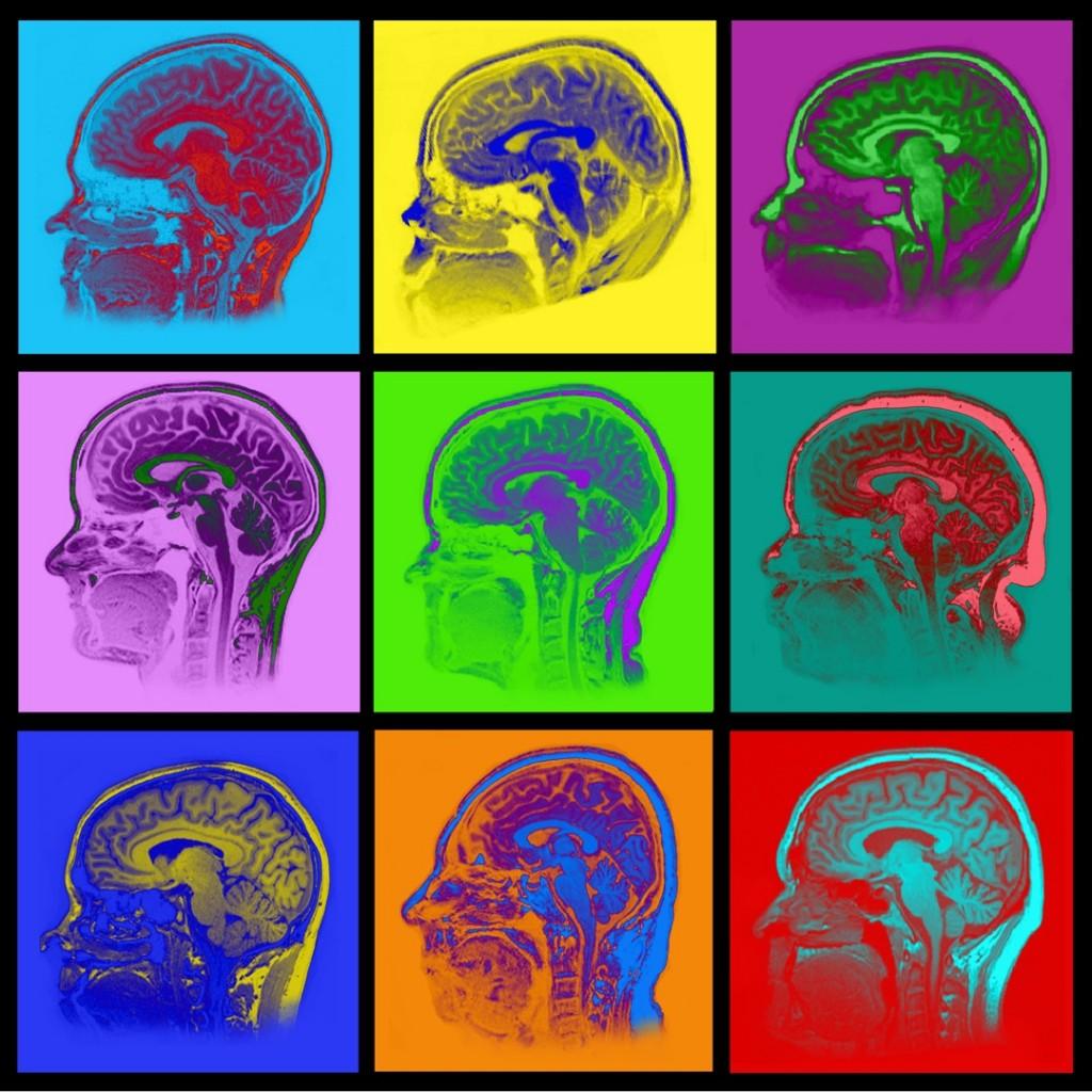 Warhol Brains-small